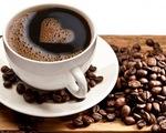 Vinatas cảnh báo người Việt đang uống cà phê kém chất lượng