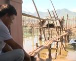 TT-Huế: Cá nuôi lồng khó tiêu thụ