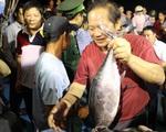 Quảng Bình: 5 tấn cá sạch được mua hết trong 1 giờ