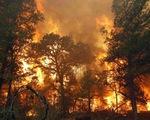 Nhiều địa phương có nguy cơ cháy rừng ở cấp cực kỳ nguy hiểm
