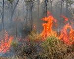 Yên Bái: Cháy rừng ở Mù Cang Chải, 800 người tham gia dập lửa