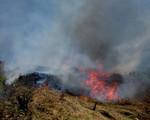 Liên tiếp xảy ra cháy rừng tại vùng Tây Bắc