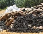 Vụ chôn lấp rác thải của Formosa tại Hà Tĩnh: Còn nhiều nghi vấn!