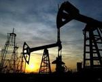 Giá dầu thế giới lần đầu vượt mốc 50 USD/thùng