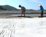Muối Sa Huỳnh trước nguy cơ mất thương hiệu vì rớt giá thê thảm