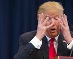 Thời báo New York: Ông Donald Trump nợ 650 triệu USD