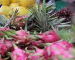 Kim ngạch xuất khẩu trái cây dự kiến đạt hơn 2 tỉ USD