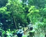 """Lâm Đồng tăng cường truy bắt trùm lâm tặc """"Hà đen"""""""