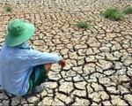 Việt Nam mất 15.000 tỷ đồng vì hạn hán, xâm nhập mặn