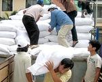 Hỗ trợ gần 865 tấn gạo cho tỉnh Cao Bằng