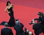 Ngắm dàn sao đốt cháy thảm đỏ Cannes 2016