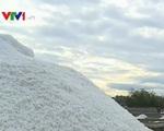 Giá muối tại Bình Định chỉ còn... 300 đồng/kg