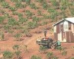 Nắng hạn kéo dài, nông dân tranh giành nguồn nước tưới