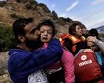 EU công bố kế hoạch khôi phục Schengen