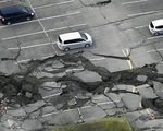 Động đất 7,3 độ richter tại Nhật Bản, số người thiệt mạng đã lên tới 16