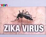 Việt Nam nâng cảnh báo sau vụ du khách Australia nhiễm Zika
