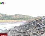 Ninh Thuận thiếu nước tưới trầm trọng vụ Đông Xuân