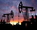 Saudi Arabia: Giá dầu sẽ lên mức 60 USD/thùng trong năm nay