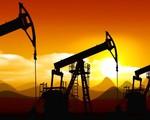 Các nước Mỹ Latin tìm cách vực giá dầu