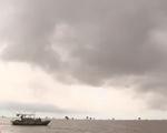Nông nghiệp Thái Bình tan hoang sau cơn bão số 1