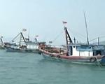 Năm 2015, hơn 30 tàu cá của ngư dân Bình Định bị nước ngoài bắt giữ