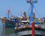Tàu Đông Phong 68 đâm chìm tàu cá, 4 ngư dân rơi xuống biển