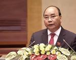 Thủ tướng yêu cầu làm rõ thông tin phản ánh việc chặt phá rừng tại Quảng Trị