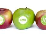 Mỹ dán nhãn thực phẩm biến đổi gen