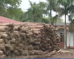 Bắc Giang: Khuất tất khiến dân mất trắng đất sau 10 năm cho thuê