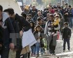 EU thành lập đơn vị chống nhập cư bất hợp pháp