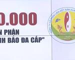 Bão đa cấp Liên kết Việt: Đằng sau nụ cười trừ và số phận của 60.000 con người