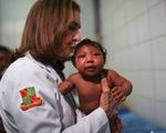 WHO ban bố tình trạng khẩn cấp toàn cầu về virus Zika