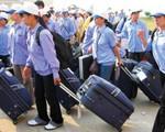 Tuyển dụng thêm lao động sang Hàn Quốc vào cuối năm nay