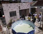 WHO cảnh báo nguy cơ Zika bùng phát thành đại dịch