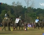 Đặc sắc lễ hội đua voi ở Nepal
