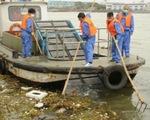 Hàng ngàn xác lợn chết trên sông Hoàng Phố