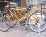Xe đạp khung tre - Đặc sản mới của du lịch Hội An