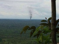 Tai nạn máy bay Colombia: Toàn bộ hành khách và tổ bay thiệt mạng