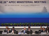 APEC nhất trí thành lập mạng lưới chống tham nhũng