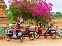 Bagan, Myanmar: Xe ngựa truyền thống cạnh tranh xe đạp điện