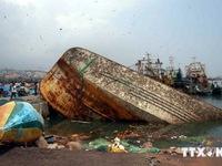 Sau bão Hudhud, nạn đói đe dọa cuộc sống người dân Ấn Độ