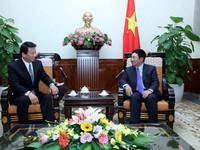 Phó Thủ tướng Phạm Bình Minh tiếp Đại sứ đặc biệt Việt - Nhật