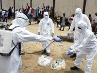 Trường hợp đầu tiên nhiễm virus Ebola ngoài Tây Phi