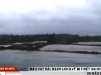 Hải Phòng sau bão số 3: Đảo Cát Hải bị mất điện và cô lập