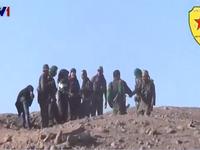 Người Kurd Syria tái chiếm một phần Kobani