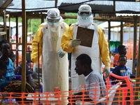 Tổ chức Y tế Thế giới cử chuyên gia Ebola tới Mali