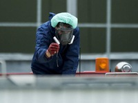 Hà Lan phát hiện ổ dịch cúm gia cầm thứ 3