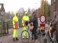 Hà Lan đối phó với bệnh cúm gia cầm H5N8