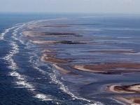 Bangladesh: Tràn dầu đe dọa môi trường nghiêm trọng