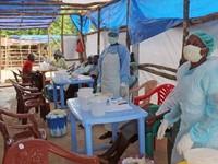 Mỹ, EU tăng cường đối phó với dịch Ebola